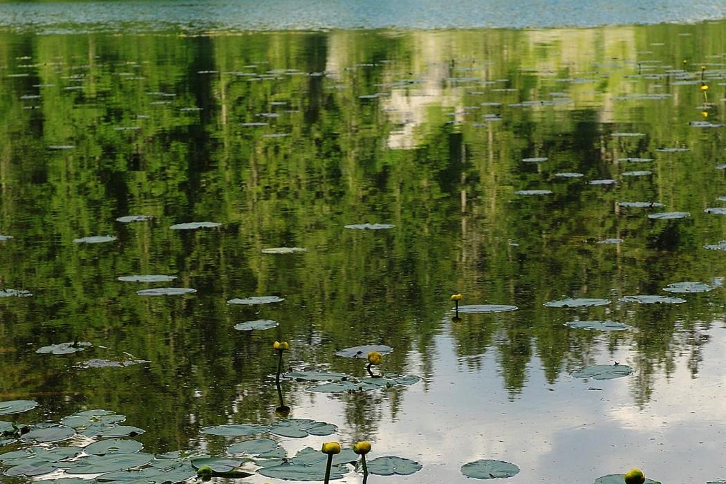 Durmitor Autocamp Razvrsje - Black Lake 3
