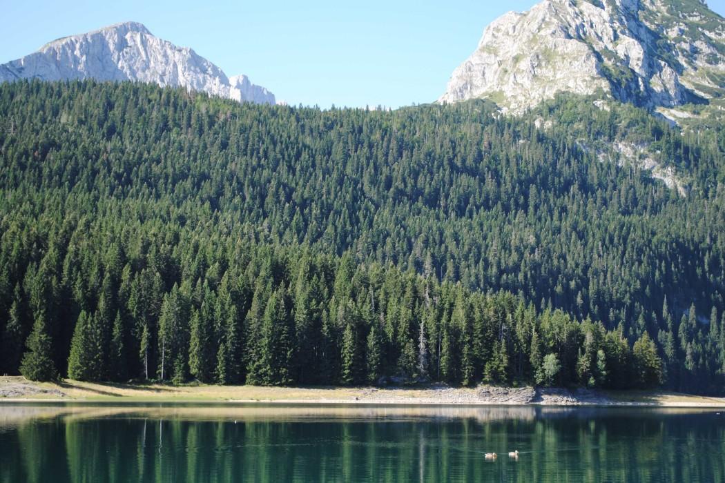 Durmitor Autocamp Razvrsje - Black Lake 8